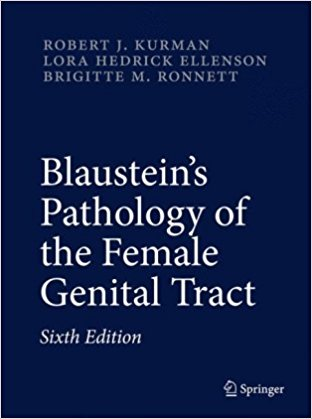 Blaustein's Pathology of the Female Genital Tract, 6th Ed 4