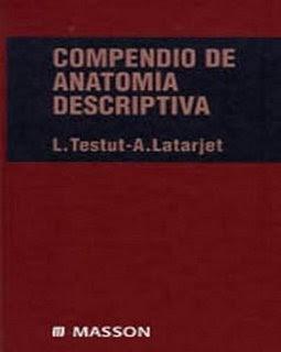 Compendio de anatomía descriptiva - L. Testut Latarjet 3