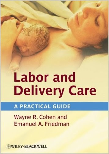 Labor and Delivery Care: A Practical Guide (2012) 2