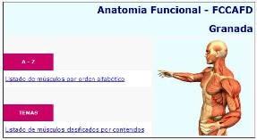 Anatomía Funcional Músculos - Rafael Valdivia 2