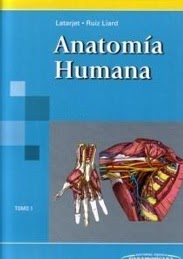 Anatomía Humana - Latarjet y Ruiz Liard 3