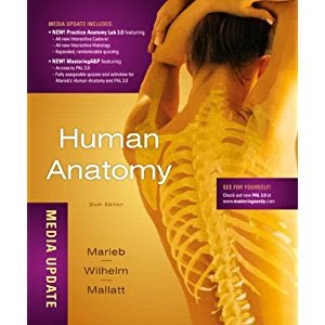 Human Anatomy, Media Update (6th Edition) 2