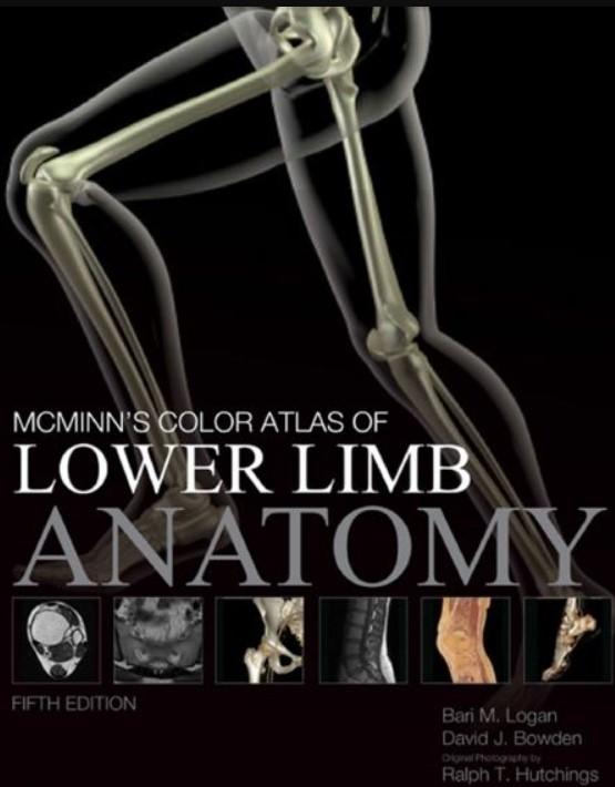 PDF Download Color Atlas of Lower Limb Anatomy 5th Edition Free