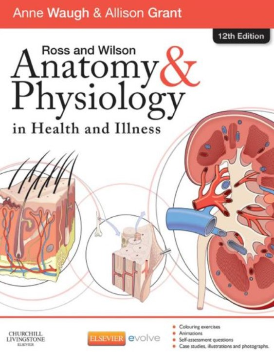 PDF Download Anatomy and Physiology in Health and illness 12th Edition Free