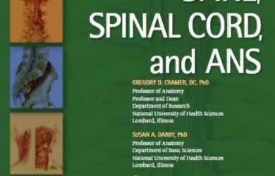 PDF Download Clinical Anatomy of the Spine, Spinal Cord, and Ans 3rd Edition Free