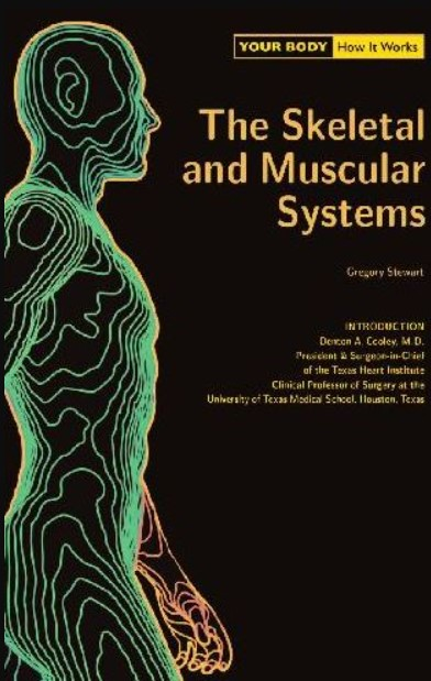 PDF Download Your Body How It Works The Skeletal and Muscular Systems Free
