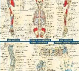 PDF Download BarCharts QuickStudy Anatomy Volume 2 Free