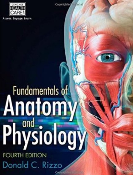 PDF Download Fundamentals of Anatomy and Physiology 4th Edition Free
