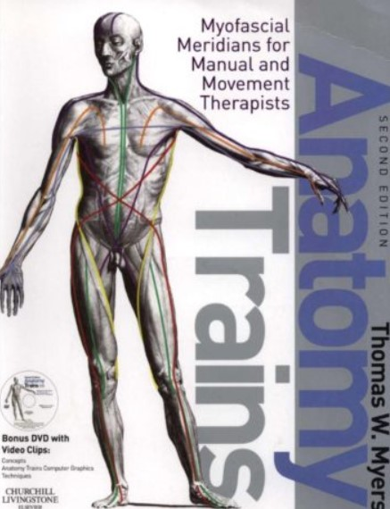 PDF Download Anatomy Trains: Myofascial Meridians for Manual and Movement Therapists 2nd Edition Free