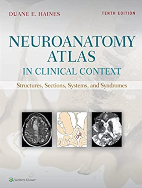 Download Neuroanatomy Atlas in Clinical Context 10th Edition PDF Free