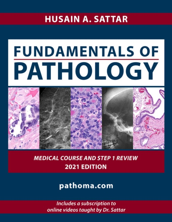 Download Pathoma 2021 PDF Fundamentals of Pathology Free