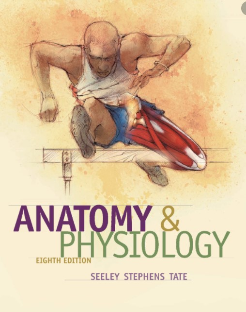 Download Anatomy and Physiology 8th Edition PDF Free