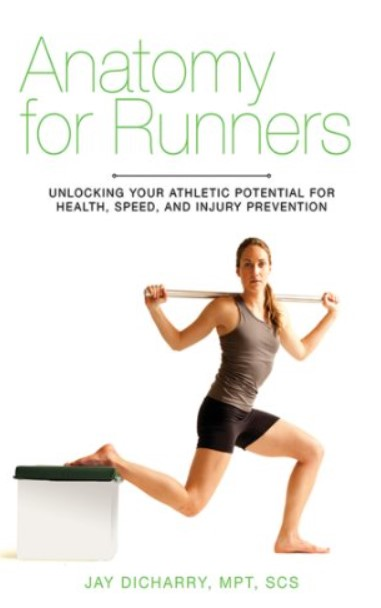 Download Anatomy for Runners PDF Free
