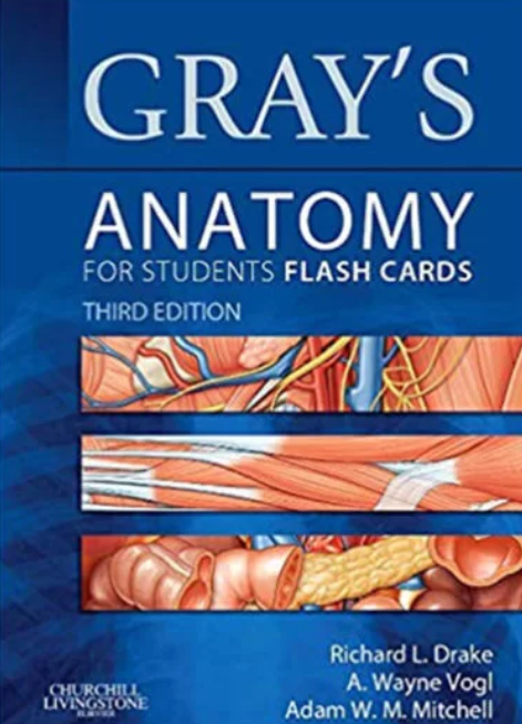Download Gray's Anatomy for Students Flash Cards 3rd Edition PDF Free