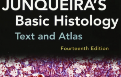Download Junqueira's Basic Histology Text and Atlas 14th Edition PDF Free