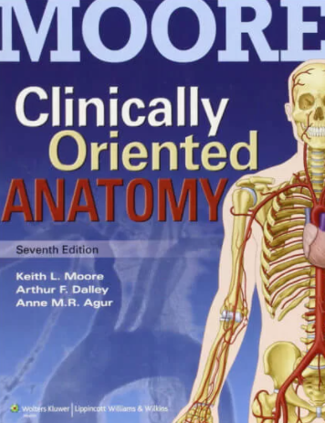 Download Moore's Clinically Oriented Anatomy 7th Edition Free PDF