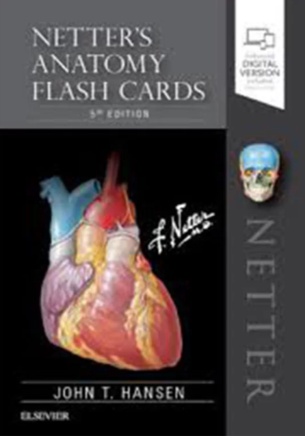Download Netter's Anatomy Flash Cards 5th Edition PDF Free