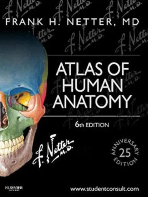 Netter's Atlas of Human Anatomy 6th Edition Free PDF Download