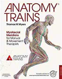 Download Anatomy Trains: Myofascial Meridians for Manual and Movement Therapists 3rd Edition PDF Free