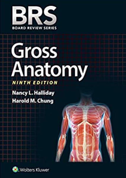 Download BRS Gross Anatomy (Board Review Series) 9th Edition PDF Free