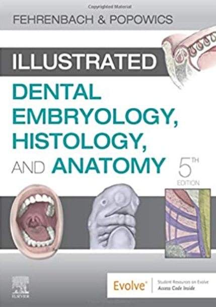 Illustrated Dental Embryology, Histology, and Anatomy 5th Edition PDF Free Download
