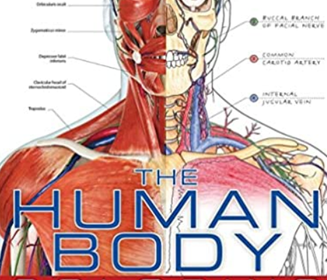 The Human Body Coloring Book: The Ultimate Anatomy Study Guide PDF Free Download