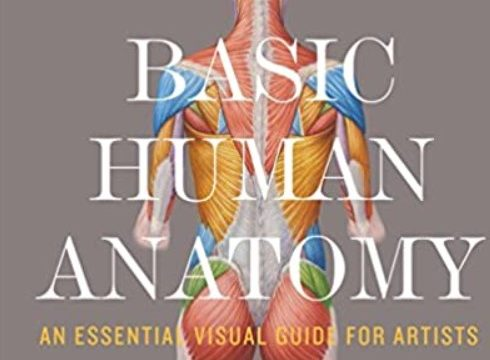 Basic Human Anatomy: An Essential Visual Guide for Artists PDF Free Download