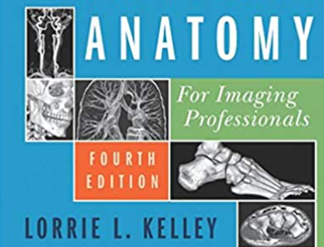 Sectional Anatomy for Imaging Professionals 4th Edition PDF Free Download